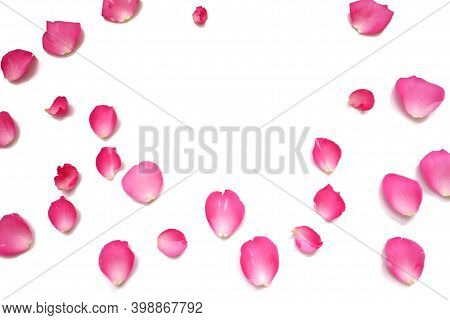 In Selective Focus A Group Of Sweet Red Rose Corollas On White Isolated Background