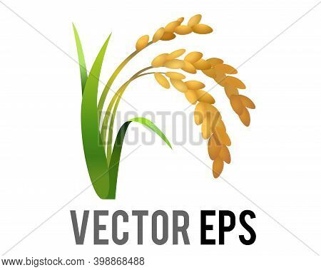 The Vector Rice Plant Icon, Represent Wheat, Corn, Oats, Sorghum, Crops, Field,  Harvests And Farmin