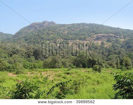 idyllic scenery at the Bhagwan Mahaveer Sanctuary and Mollem National Parkin India poster