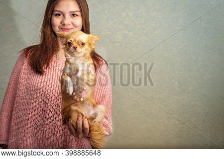 Girl Teenager 14-15 Years Old Holds In One Hand A Red Dog Chihuahua On His Hind Legs, On The Dog Pin