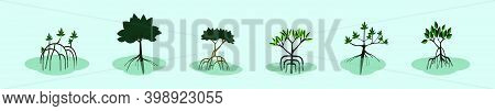 Set Of Mangrove Cartoon Icon Design Template With Various Models. Modern Vector Illustration Isolate