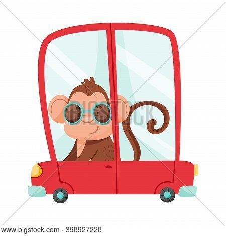 Cute Monkey With Protruding Ears Wearing Sunglasses And Driving Red Car Vector Illustration
