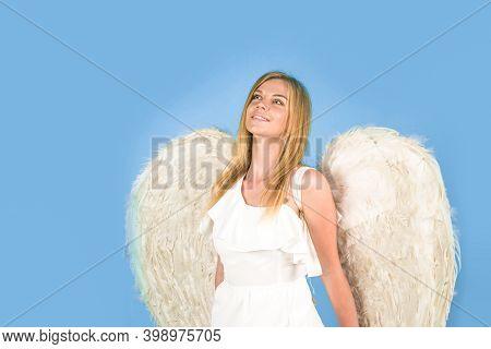 Valentines Angels. Valentines Day Cupid. Angel Woman. Cupid Girl In Valentine Day. Cute Cupid. Valen