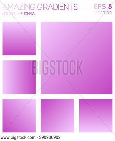 Colorful Gradients In Orchid, Fuchsia Color Tones. Adorable Background, Unusual Vector Illustration.