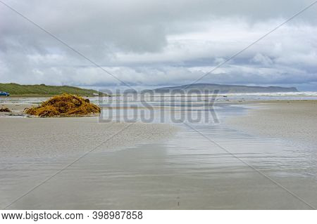 Windswept Oreti Beach With Washed Tangle Of Brown Seaweed Where Cars Can Drive On The Sand With Dune
