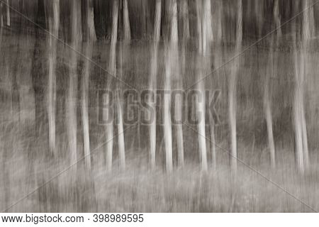 Abstract Motion Blur Forest Trees Creating Pattern