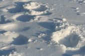 footprints on snow - wintertime poster
