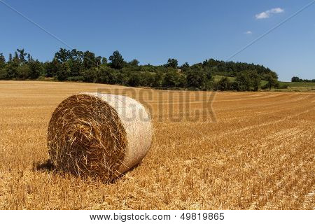 Landscape With Hay Roll