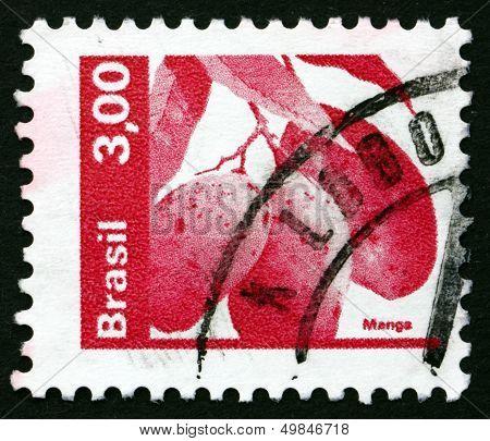 Postage Stamp Brazil 1982 Mangoes, Mangifera Indica, Fruiting Tree