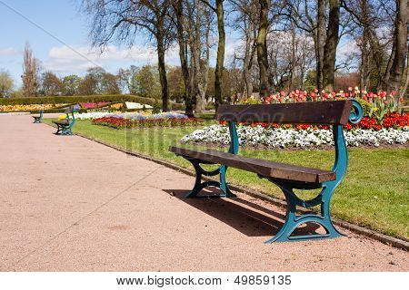 Bench On Walkway In The Park.
