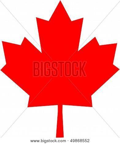 Red Maple Leaf - Symbol of Canada