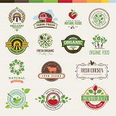 Set of badges and stickers for food poster