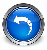 Back Rotate Arrow Icon Glossy Blue Button poster