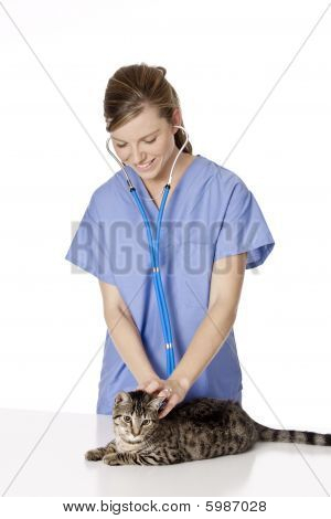 Beautiful Caucasian woman Veterinarian examining a kitten poster