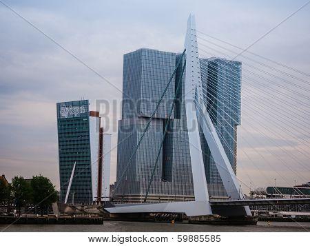 Erasmus Bridge Rotterdam, Netherlands