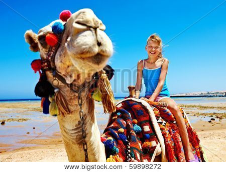 Tourists children riding camel  on the beach of  Egypt. Sharpness on a camel. poster
