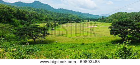 Panorama Landscape Of Green Rice Farm Field With Mountain In Thailand