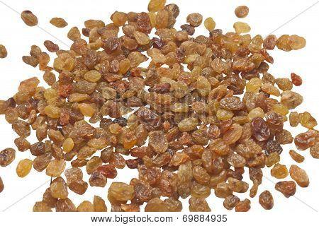 sultana raisins isolated on white