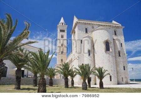 Trani Cathedral. Apulia.