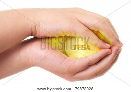 Canadian Tax-free Savings Account Concept With Two Hands Holding Tight On A Golden Egg