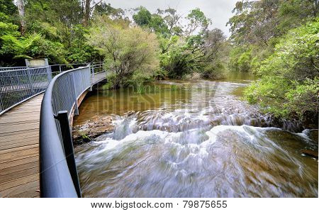 Fast Flowing Water At The Approach To Fitzroy Falls Australia