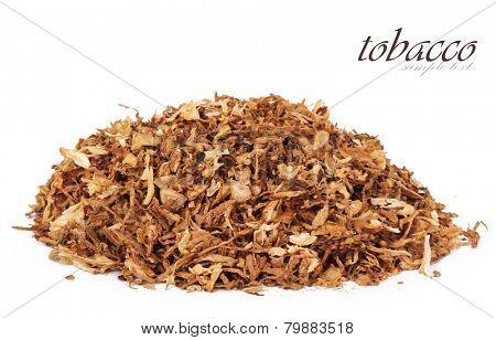 Dry smoking tobacco close-up