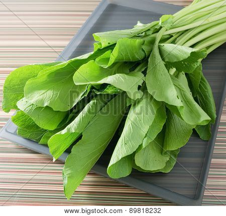 Organic Chinese Cabbage Or Bok Choy On  Tray
