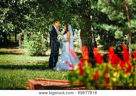 Bride and Groom at wedding Day walking Outdoors on spring nature. Bridal couple, Happy Newlywed coup