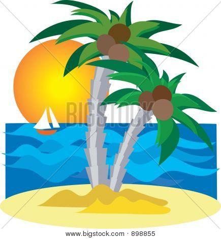 Island_Palm_Tree