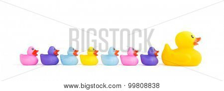 Big rubber duck leading a group of ducklings - concept for leadership