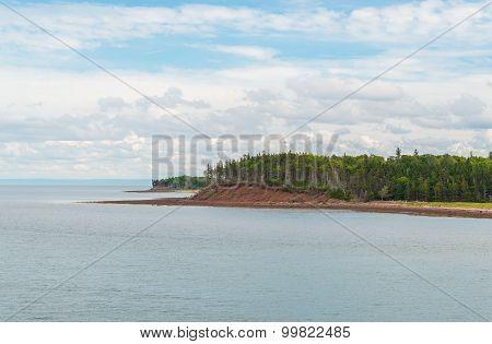 Munroes Island, Caribou
