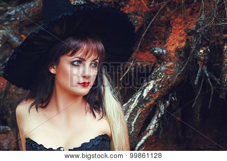 charming woman in a witch hat on nature poster