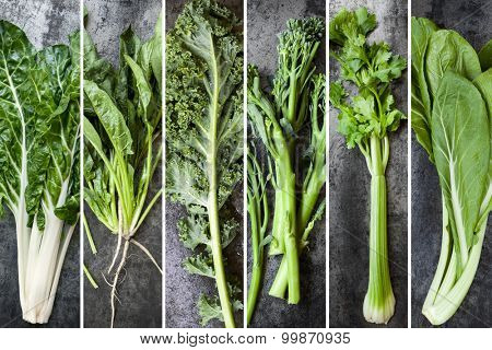 Green vegetables food collage.  Silver beet, spinach, kale, broccolini, celery and chard, over dark slate.