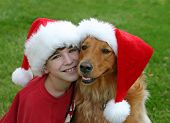 boy with golden retriever both wearing christmas hats poster