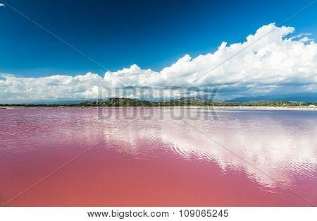 Pink Water Salt Lake In Dominican Republic