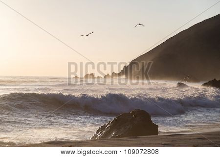 Seagulls Flying Above Waves At Pfeiffer State Park, Big Sur, California