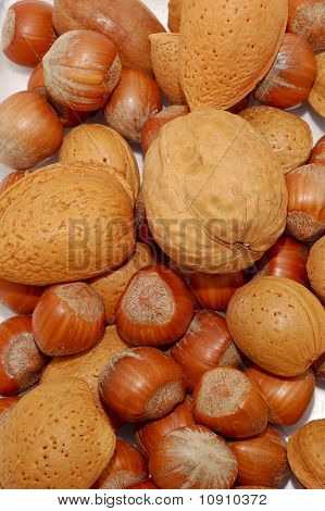 Assortment Of nuts