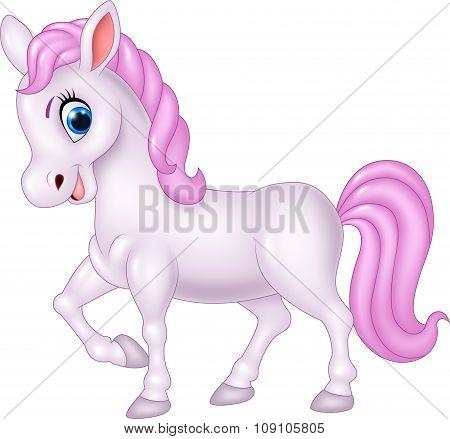 Cute pony horse isolated on white background