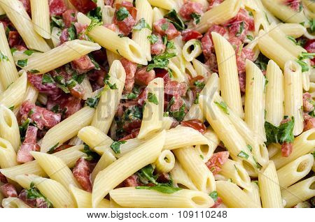 Italian Food: Pasta Called Mezze Pennette With Tomatos In Pieces And Arugula. Texture