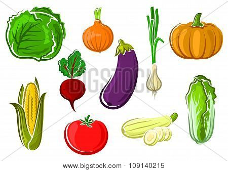 Isolated ripe healthy farm vegetables