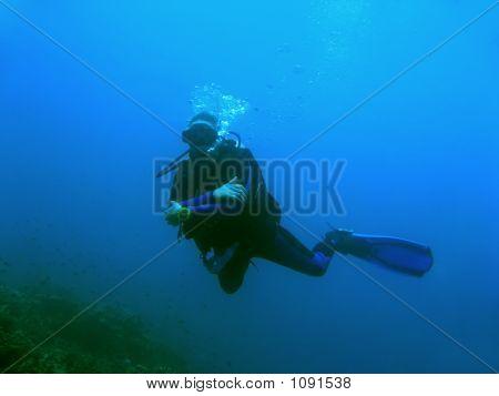 Blue Diver