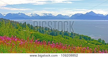 Wildflowers And Mountains By And Ocean Bay