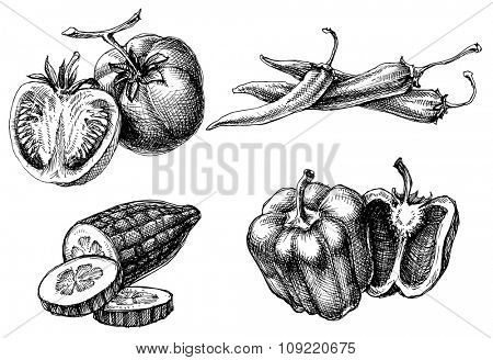 Vegetables isolated set, etch style poster