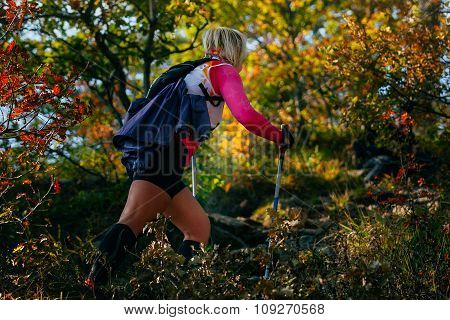 young female runner with nordic walking poles in forest climbs a mountain trail. autumn landscape fallen leaves poster