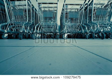 Shopping carts in supermarket in rows ready for consumers
