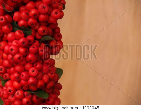 Red Firethorn Berries With Blurred Wood Copy Space