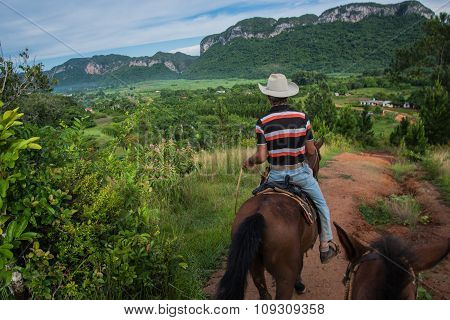 Vinales Valley, Cuba - September 24, 2015:  Local Cowboys Ridding Horseback In Coutryside Road. In M