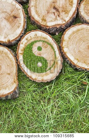 Tree stumps on the grass with green ying yang symbol. poster