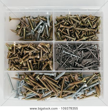Plastic Organizer With Screws And Nails