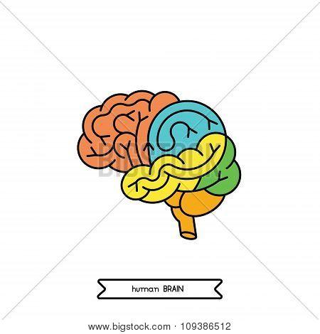 Logo Brain 1